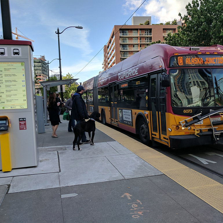 A few people- one with a dog- are about to board a RapidRide bus heading to Alaska Junction